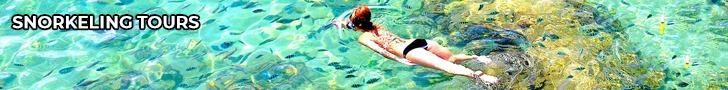 thefunkyturtle.com koh tao snorkeling tours