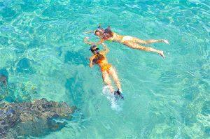 thefunkyturtle.com snorkel tour koh tao