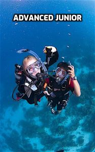 thefunkyturtle.com advanced junior open water course koh tao