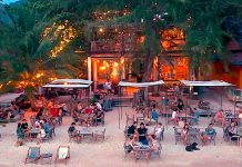 thefunkyturtle.com blue water restaurant koh tao beach