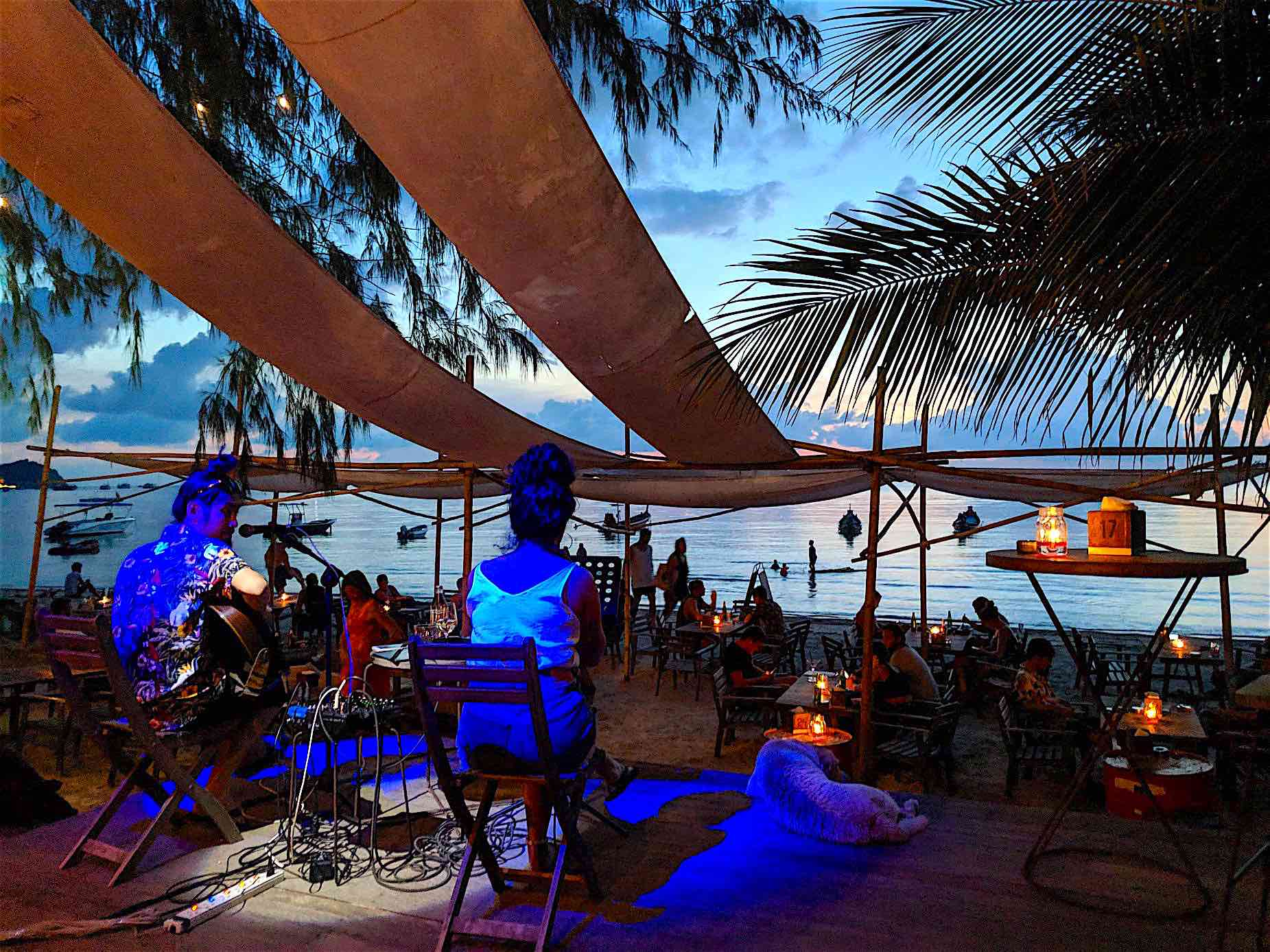 www.thefunkyturtle.com blue water restaurant koh tao live music