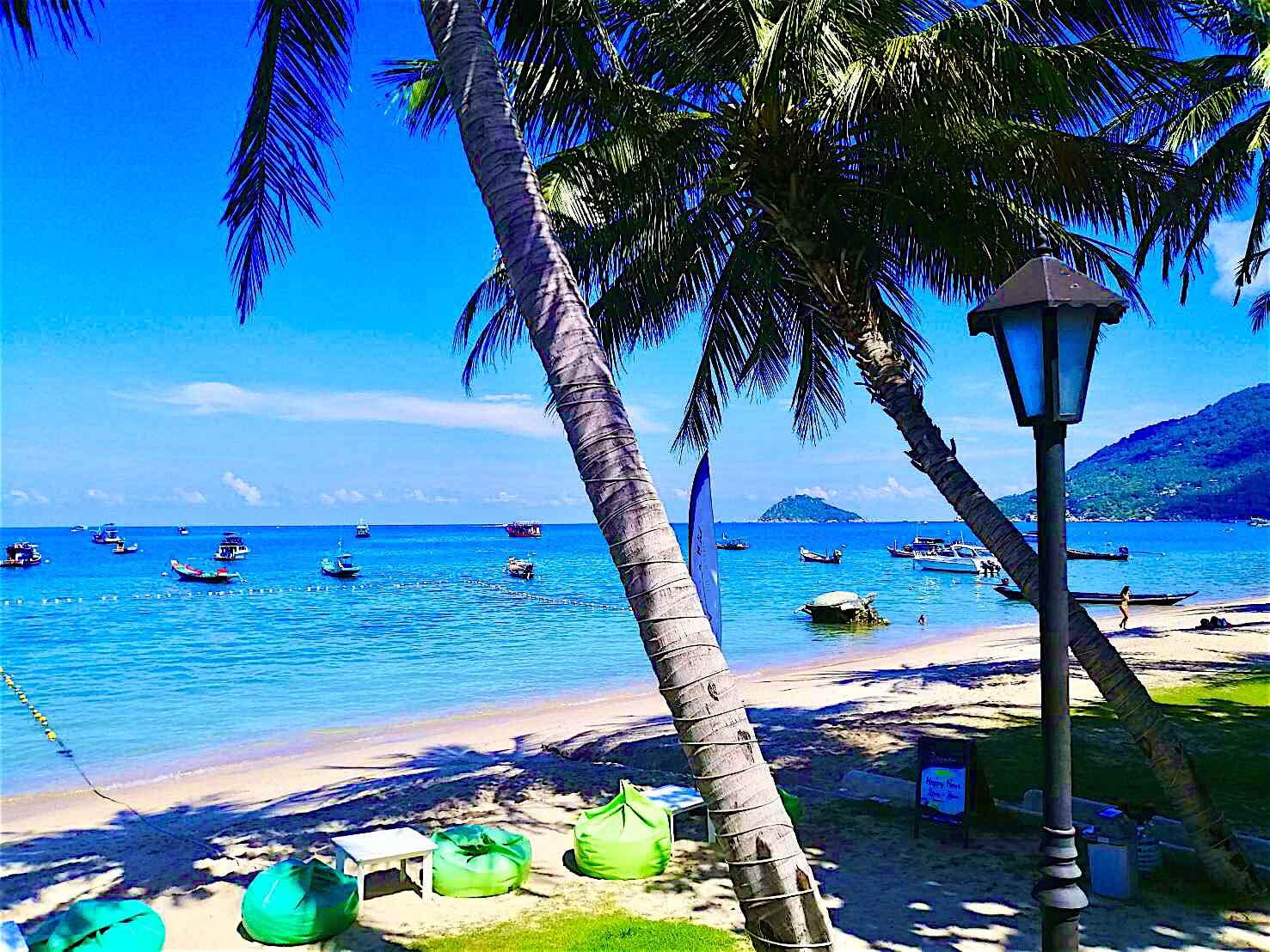 www.thefunkyturtle.com breeze restaurant koh tao beach location