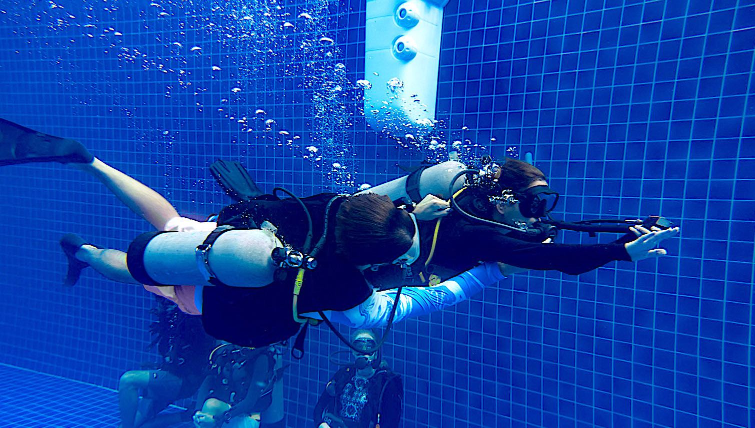 www.thefunkyturtle.com divemaster course on koh tao