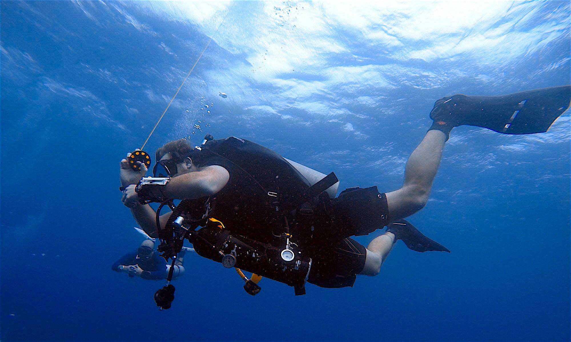 www.thefunkyturtle.com diving instructor course koh tao