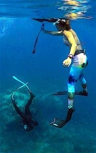 The Funky Turtle Koh Tao Best Freediving Courses