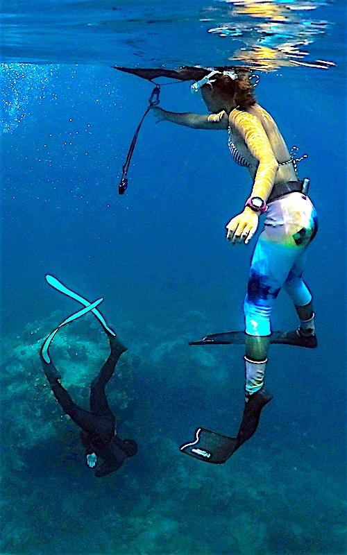 thefunkyturtle.com-freediving-courses-koh-tao