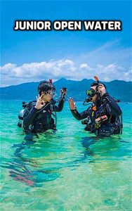 thefunkyturtle.com junior open water course koh tao