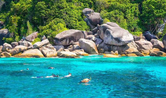 Experience Snorkeling at the Best Bays of Koh Tao