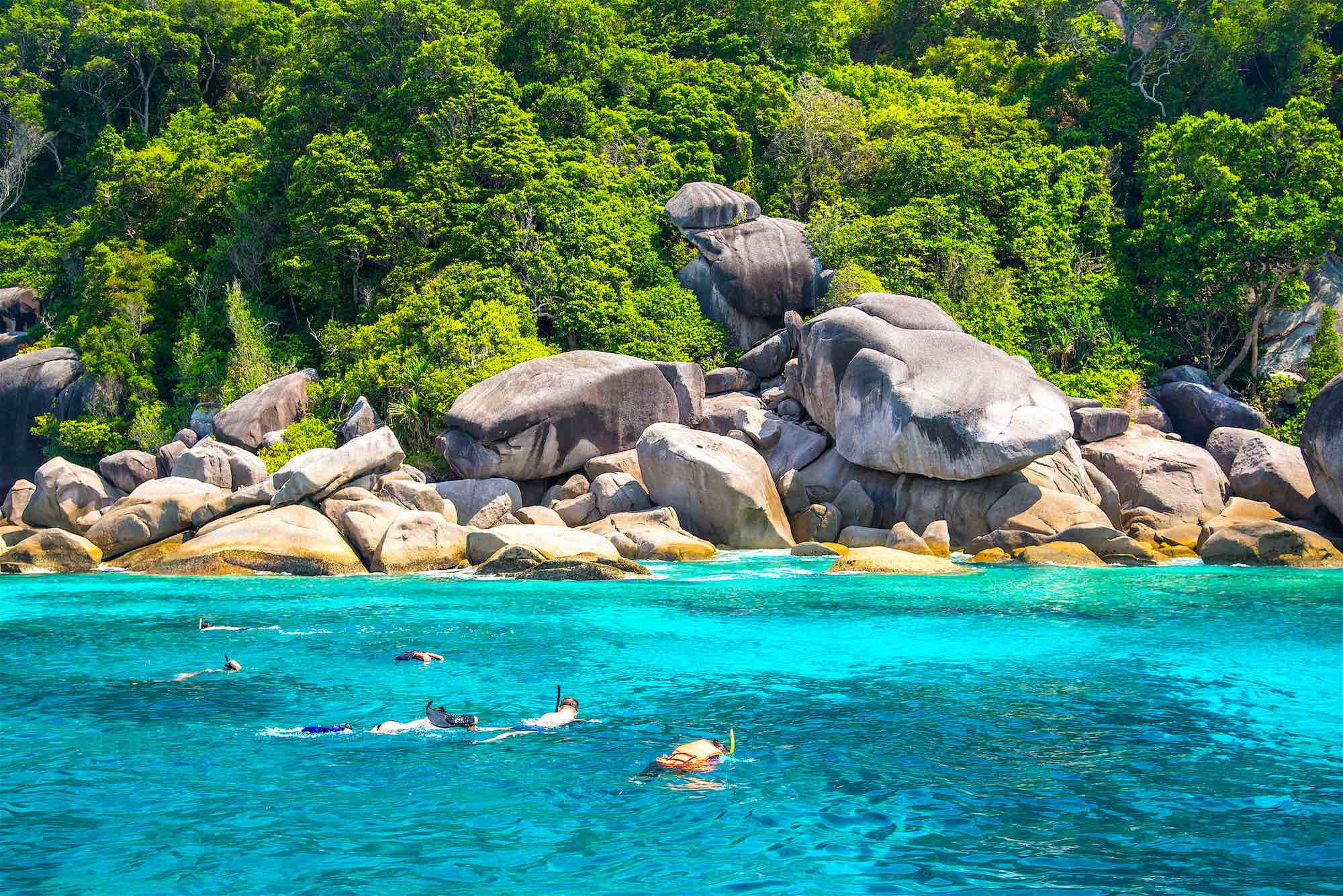 www.thefunkyturtle.com-snorkel-half-day-trip-on-koh-tao