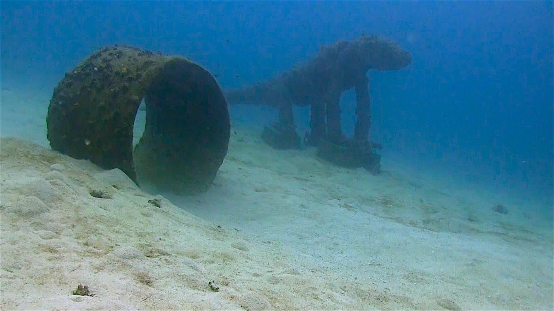 www.thefunkyturtle.com Buoyancy world dive site koh tao underwater
