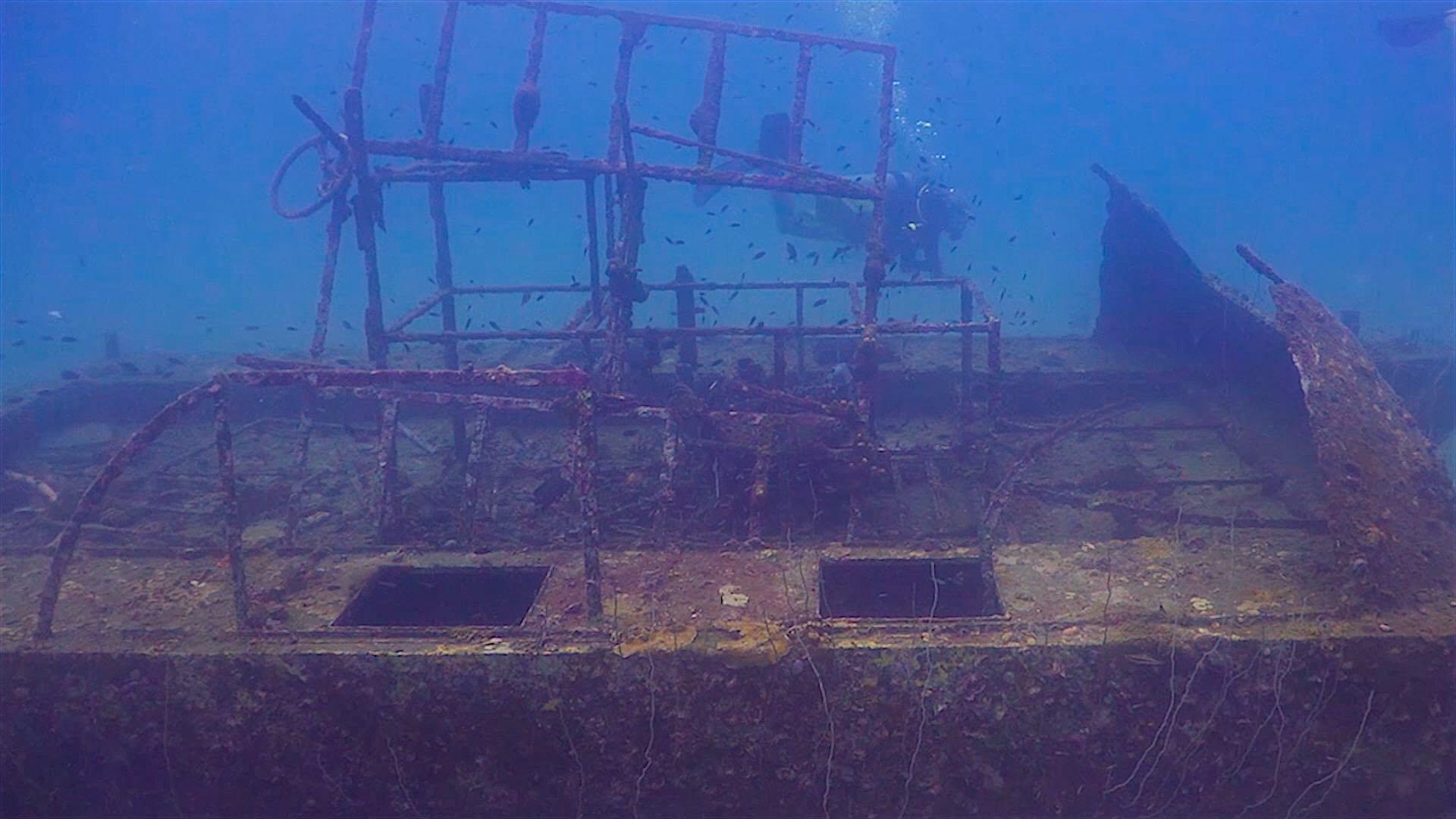 www.thefunkyturtle.com Tanote Bay dive site koh tao sunken catamaran