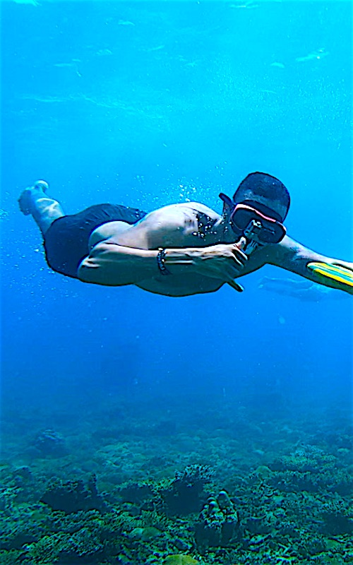 www.thefunkyturtle.com divewing activities on koh tao