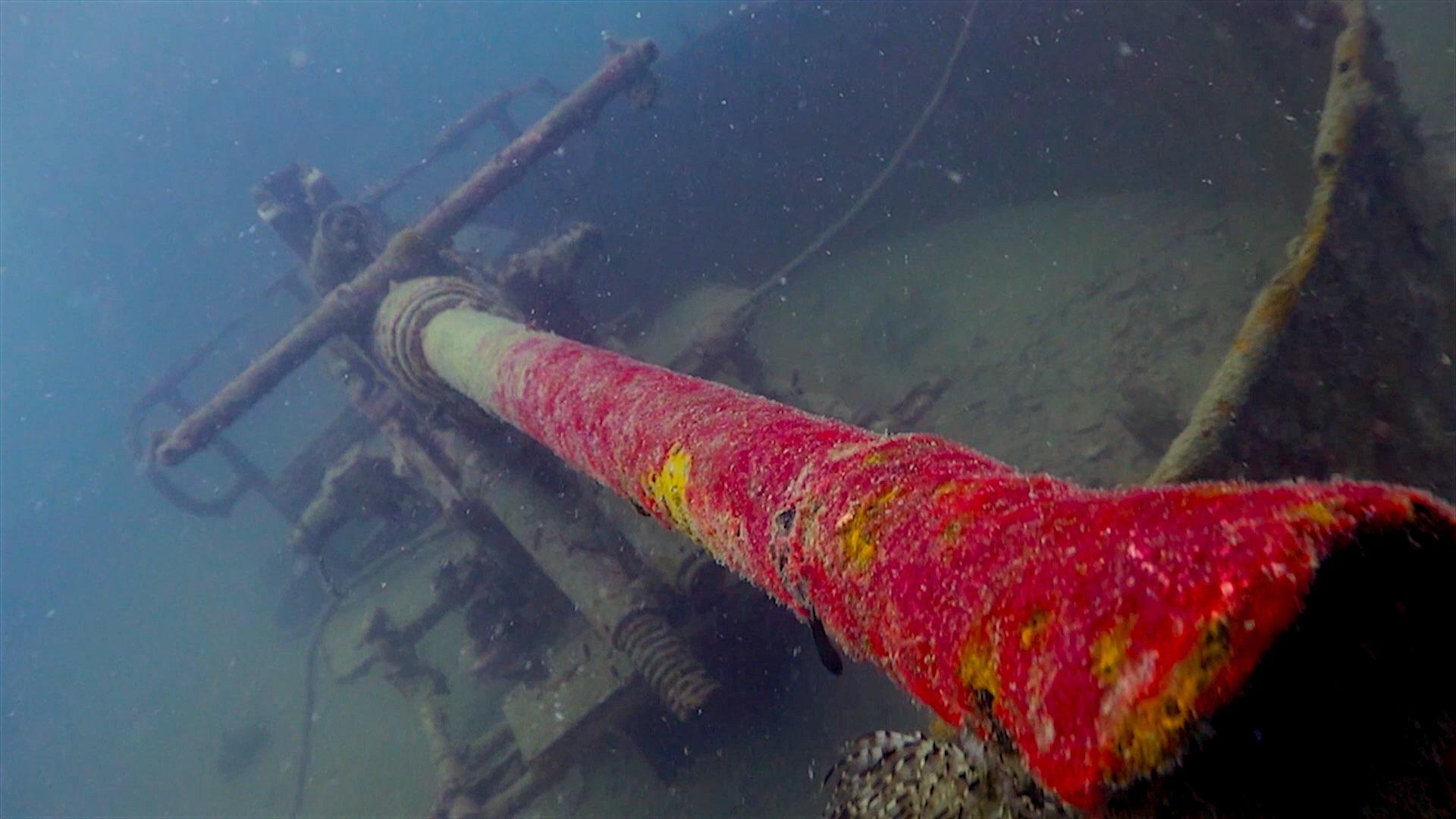 www.thefunkyturtle.com htms sattakut wreck dive koh tao gun boat