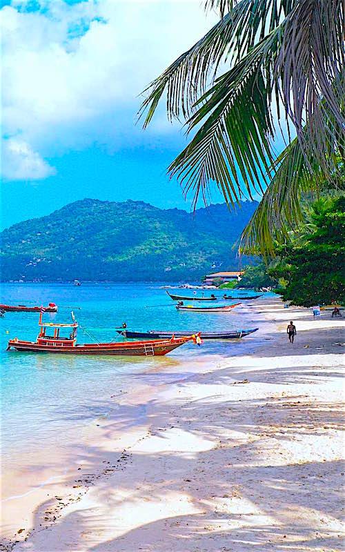 thefunkyturtle.com mae haad beach and bay koh tao thailand