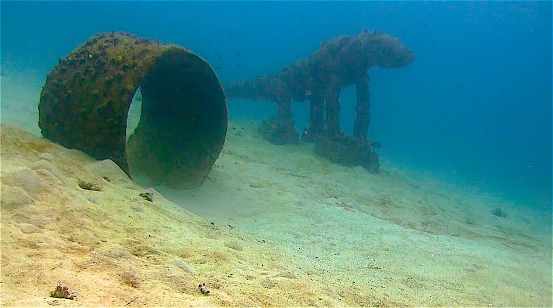 www.thefunkyturtle.com Buoyancy scuba diver training dive site koh tao