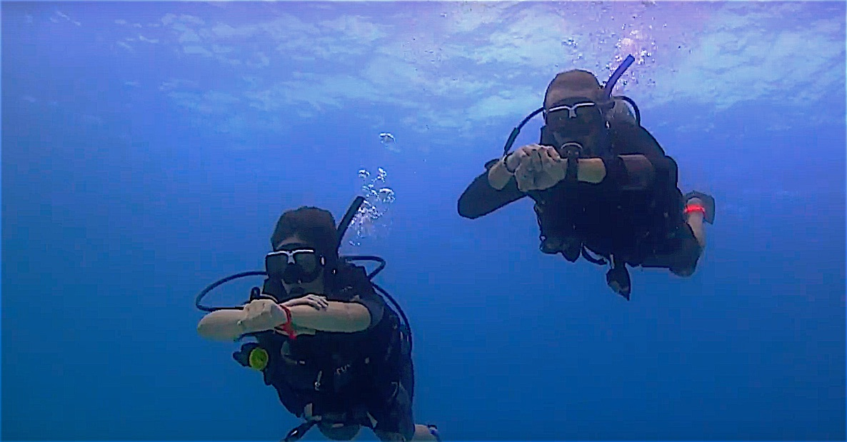 www.thefunkyturtle.com advanced diver training course koh tao