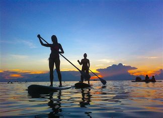 thefunkyturtle.com best Paddle Boarding koh tao