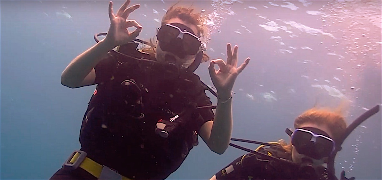 www.thefunkyturtle.com best fun divers on koh tao