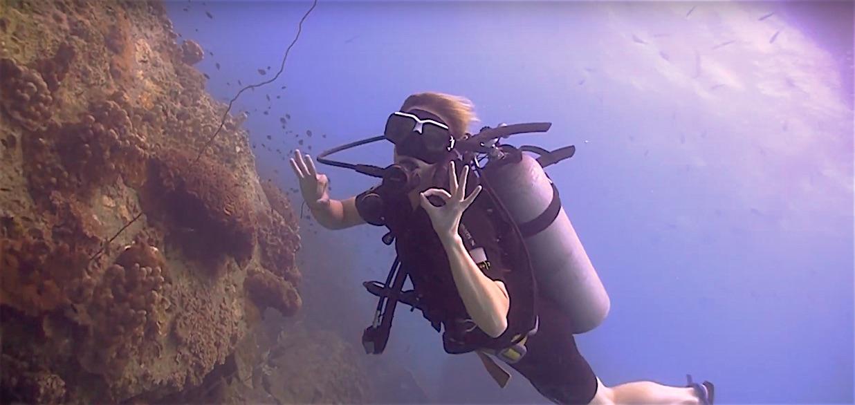 www.thefunkyturtle.com best fun diving in thailand