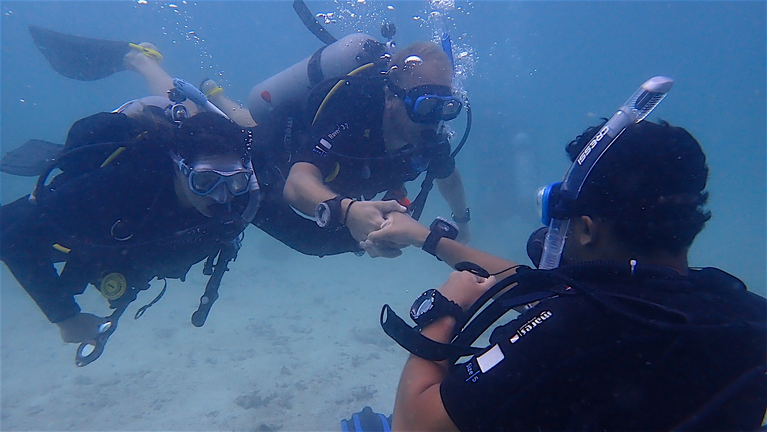 www.thefunkyturtle.com best scuba diving for beginners koh tao