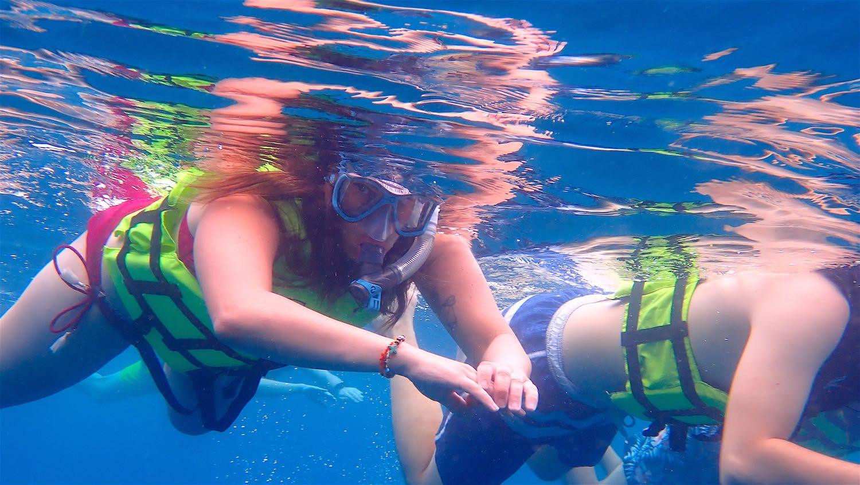 www.thefunkyturtle.com best snorkeling koh tao