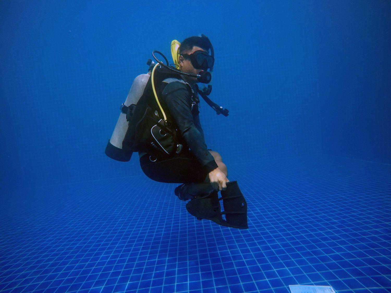 www.thefunkyturtle.com buoyancy specialty courses koh tao