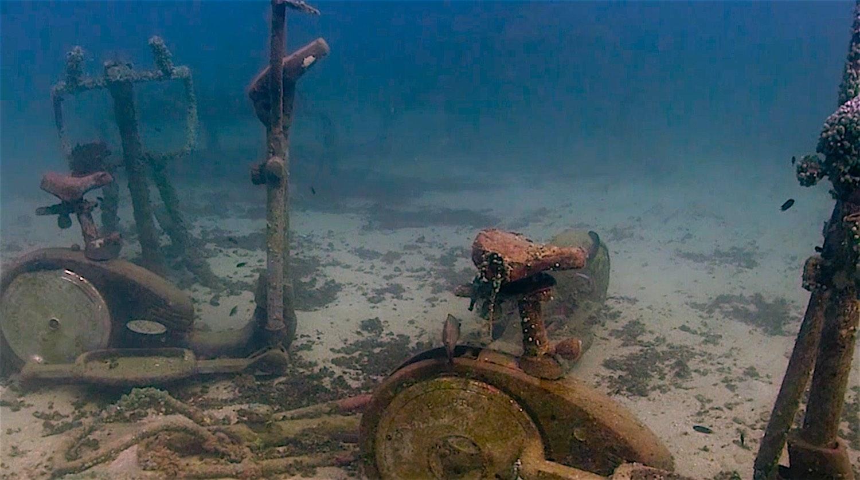www.thefunkyturtle.com coral restoraton at junkyard reef koh tao