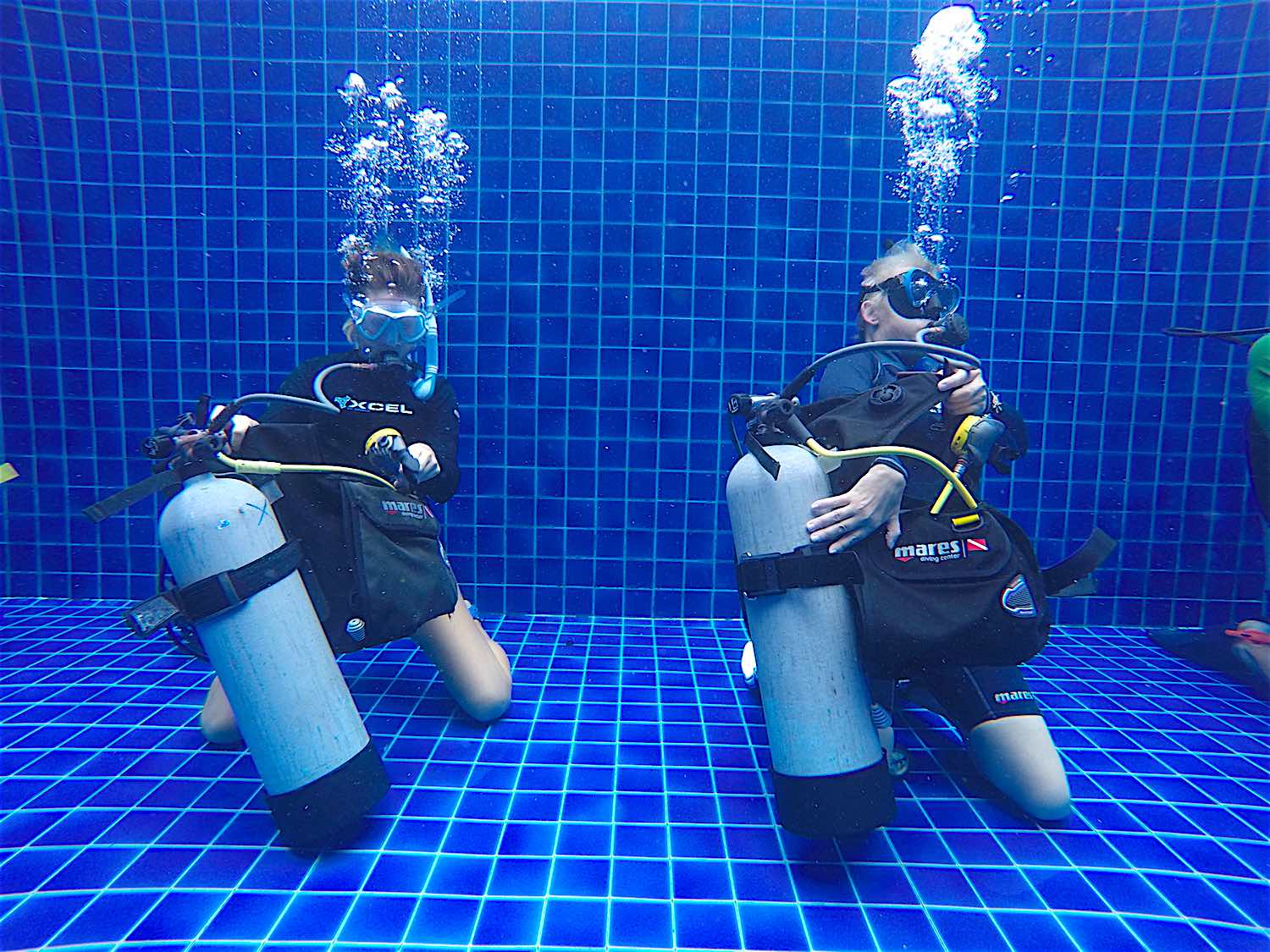 www.thefunkyturtle.com-divemaster-professional-training-course-koh-tao