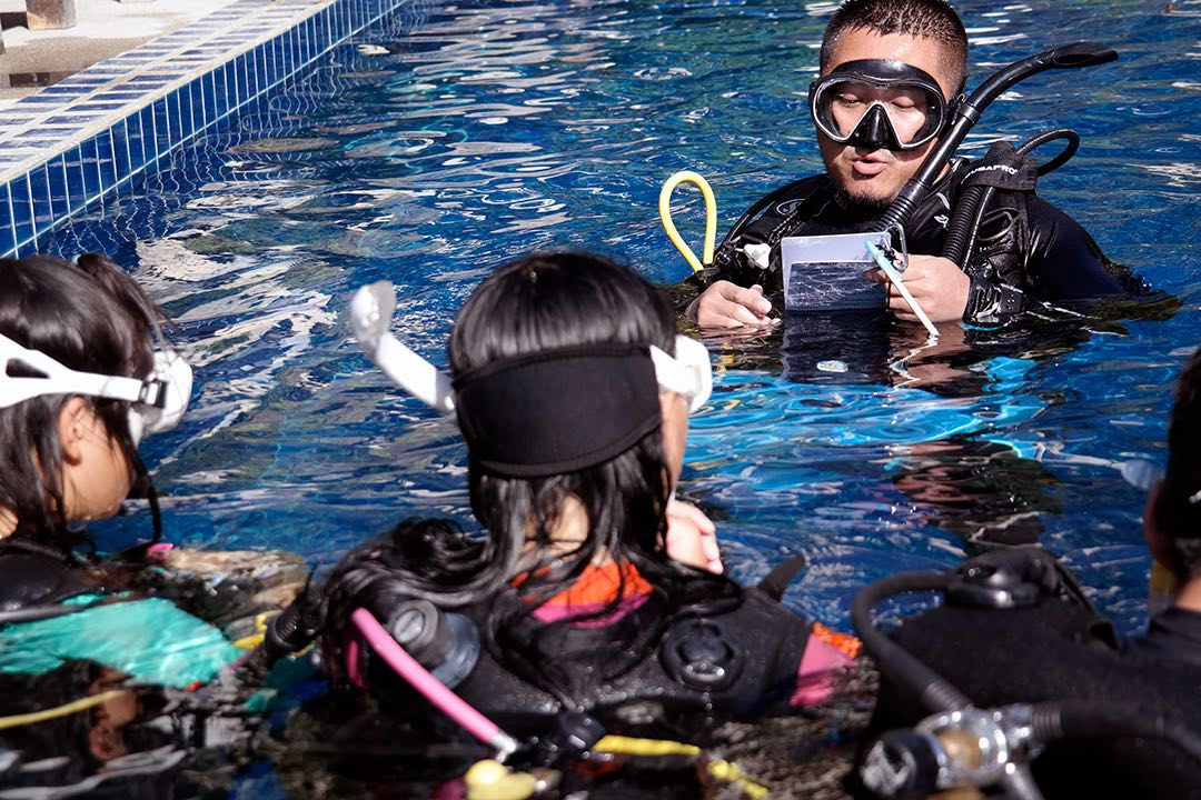 www.thefunkyturtle.com diving instructor course thailand