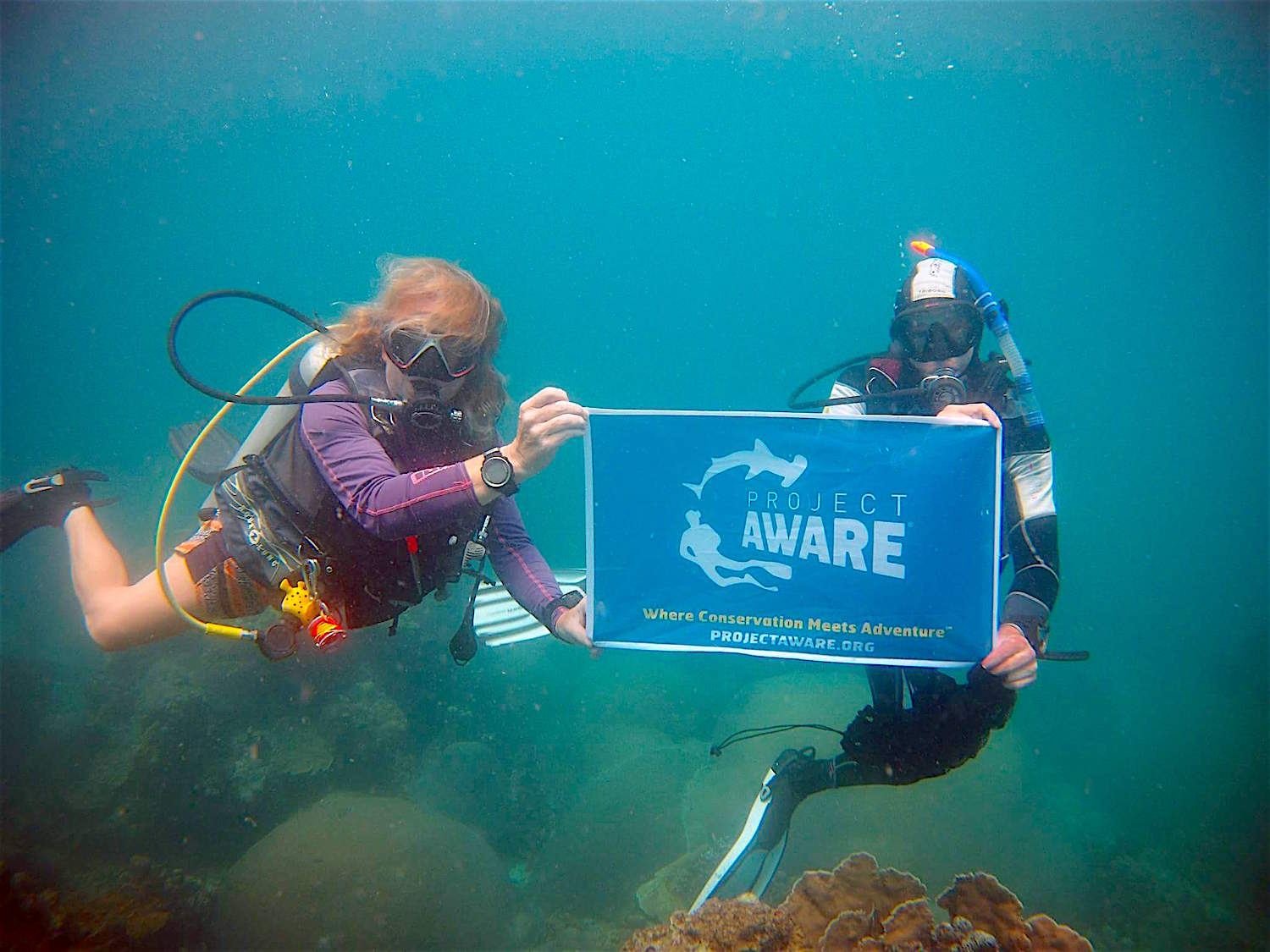 www.thefunkyturtle.com project aware on koh tao