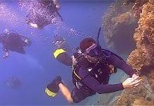 Scuba Diver Beginners Course