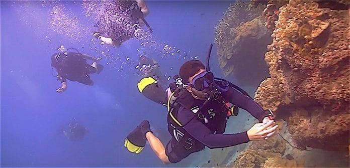 thefunkyturtle.com scuba diving beginners course