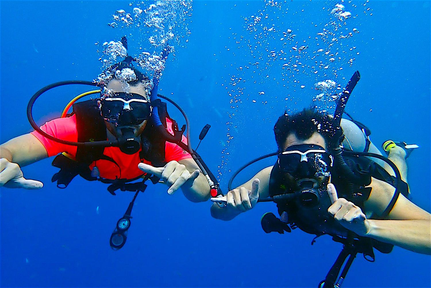 www.thefunkyturtle.com scuba diving koh tao thailand