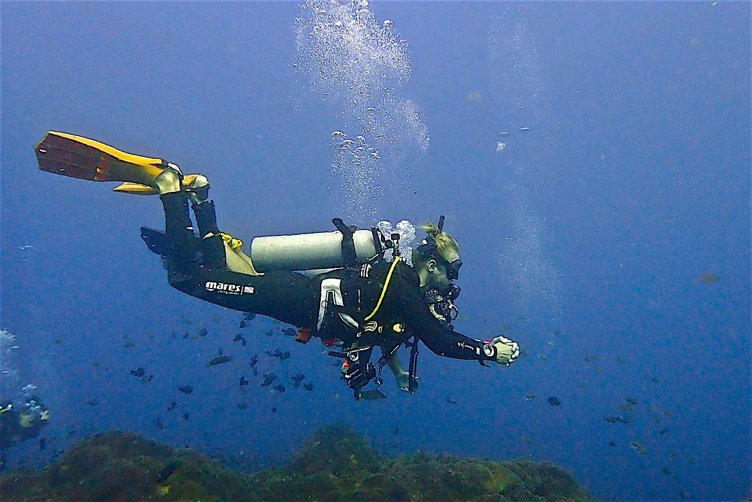 www.thefunkyturtle.com scuba diving lifestyle koh tao