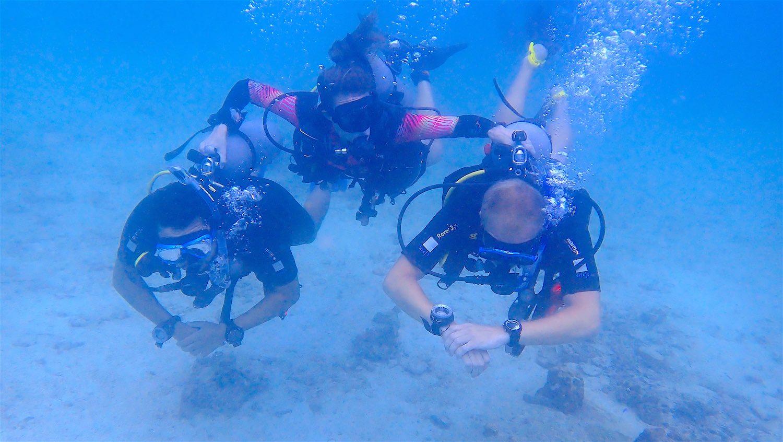 www.thefunkyturtle.com scuba diving on koh tao