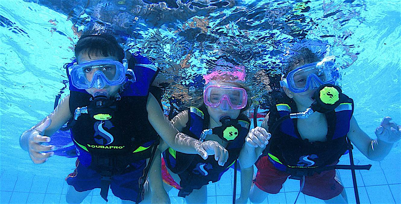 www.thefunkyturtle.com seal team for kids on koh tao