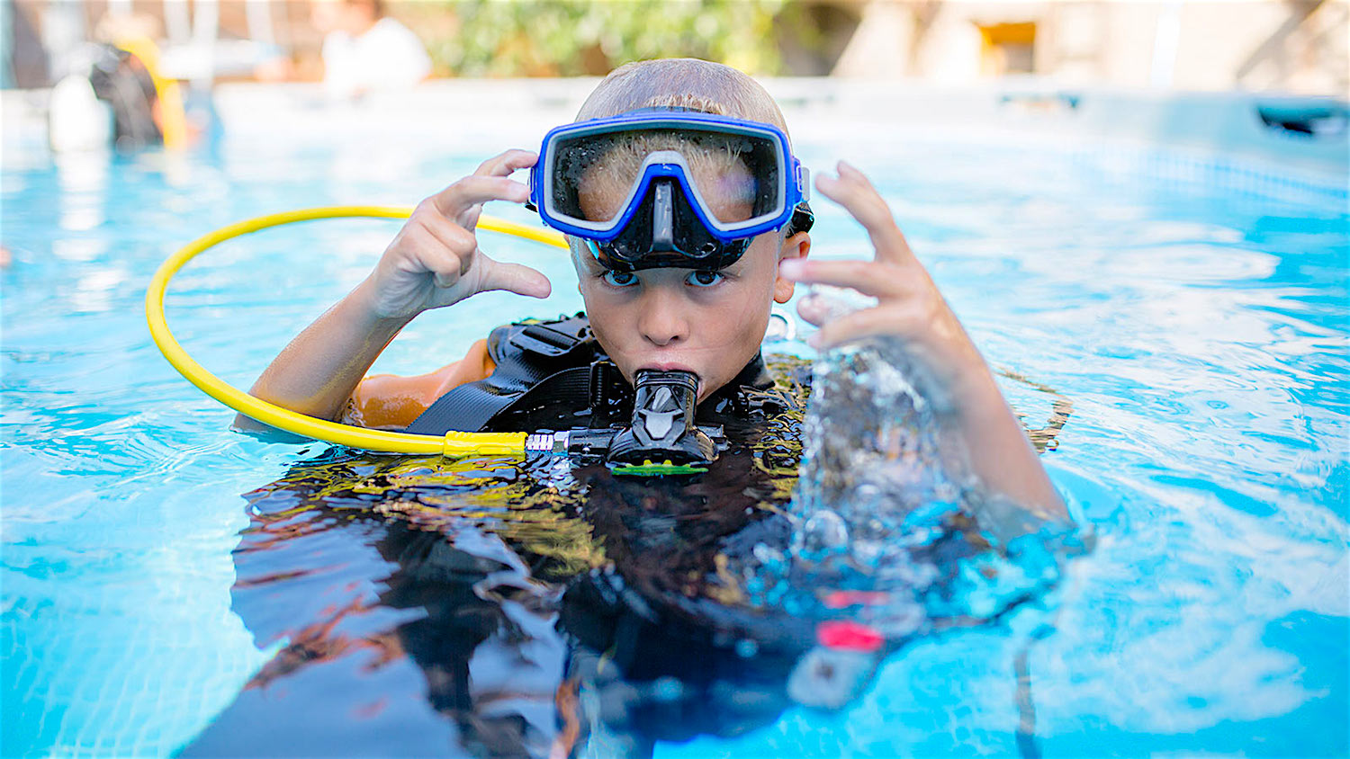 www.thefunkyturtle.com seal team for kids