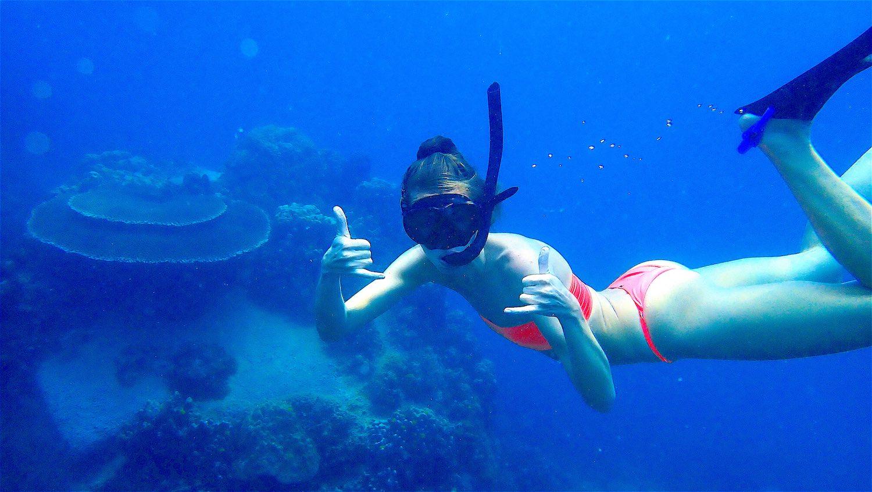 www.thefunkyturtle.com snorkel on koh tao