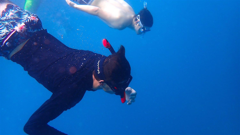 www.thefunkyturtle.com snorkeling on koh tao