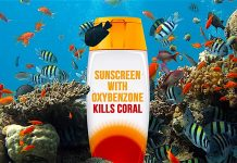 thefunkyturtle.com suncreen and coral reefs