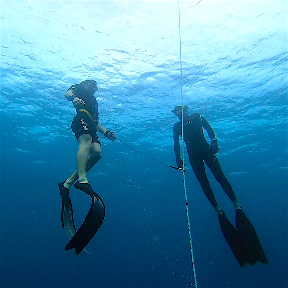 www.thefunkyturtle.com advanced freediver course on koh tao