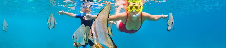www.thefunkyturtle.com-aow-leuk-snorkel-marine-life
