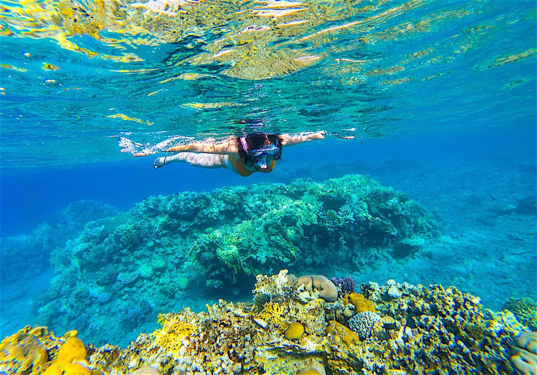 www.thefunkyturtle.com-aow-leuk-snorkel-tour