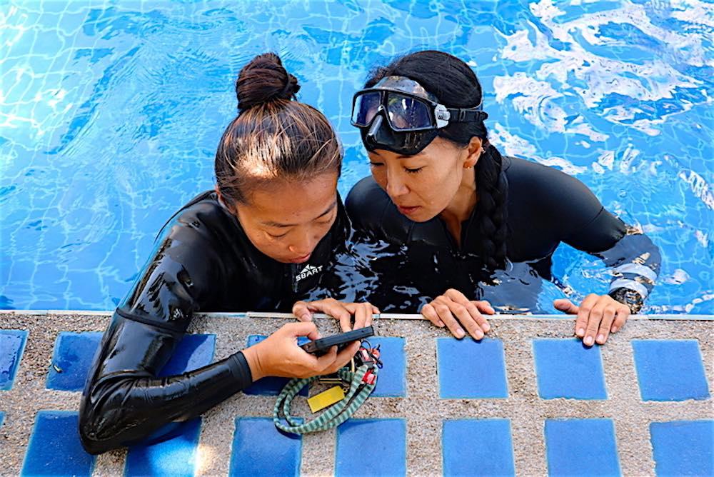 www.thefunkyturtle.com basic freediving course