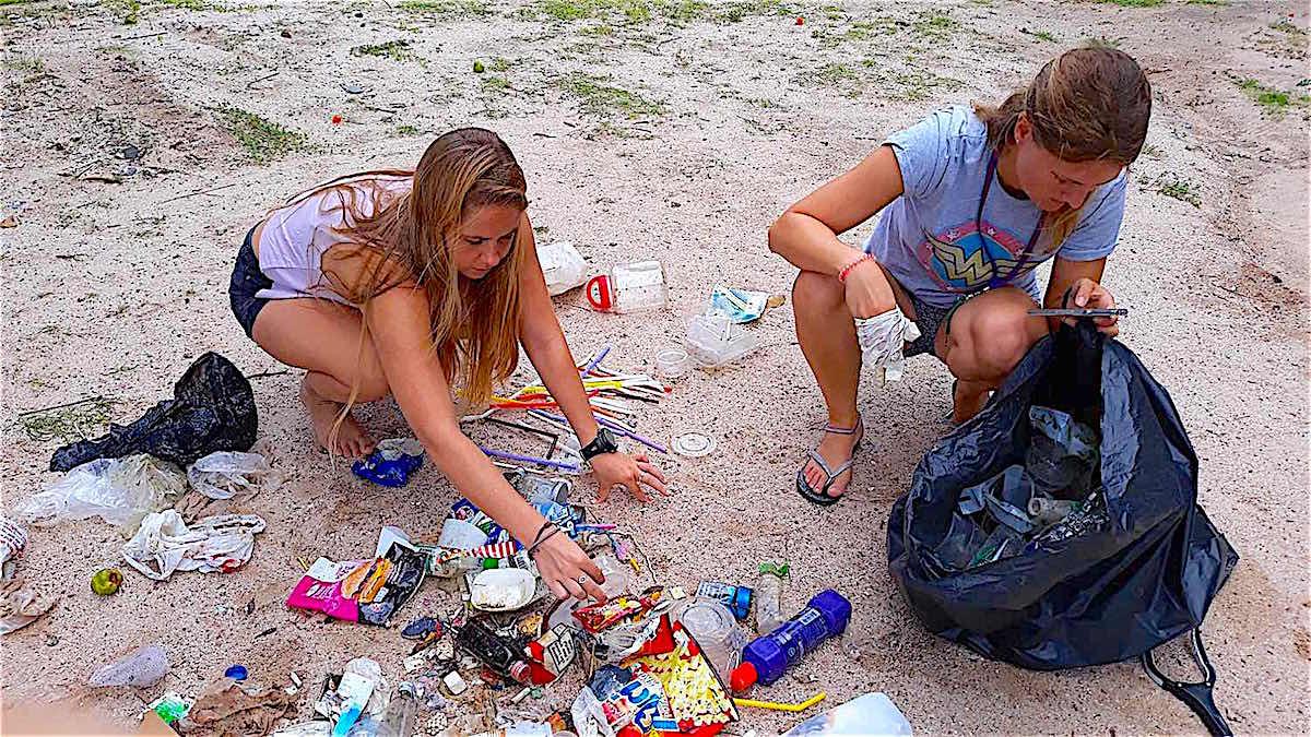 www.thefunkyturtle.com beach clean ups koh tao