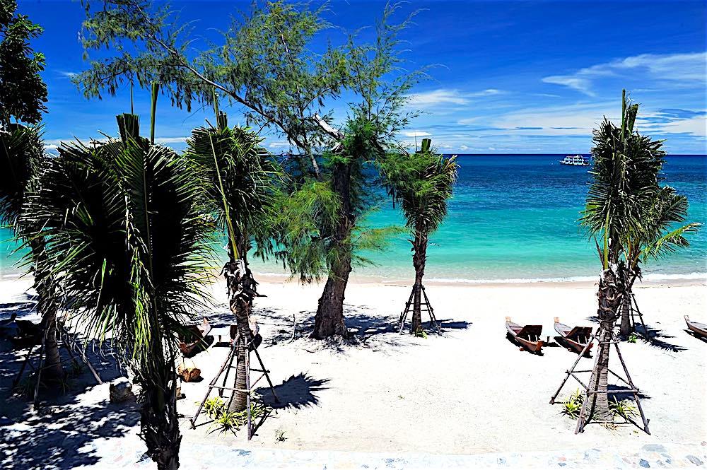 www.thefunkyturtle.com beach club koh tao