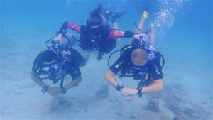 thefunkyturtle.com best discover scuba diving for beginners koh tao