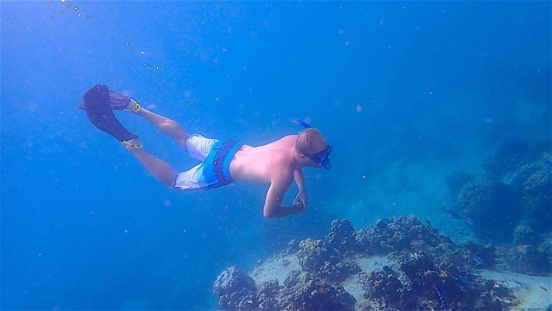www.thefunkyturtle.com day trip to mango bay snorkeling