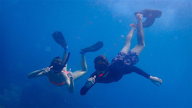 www.thefunkyturtle.com explore mango bay snorkeling