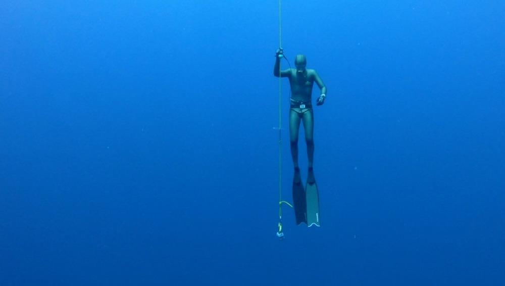 www.thefunkyturtle.com freediving koh tao
